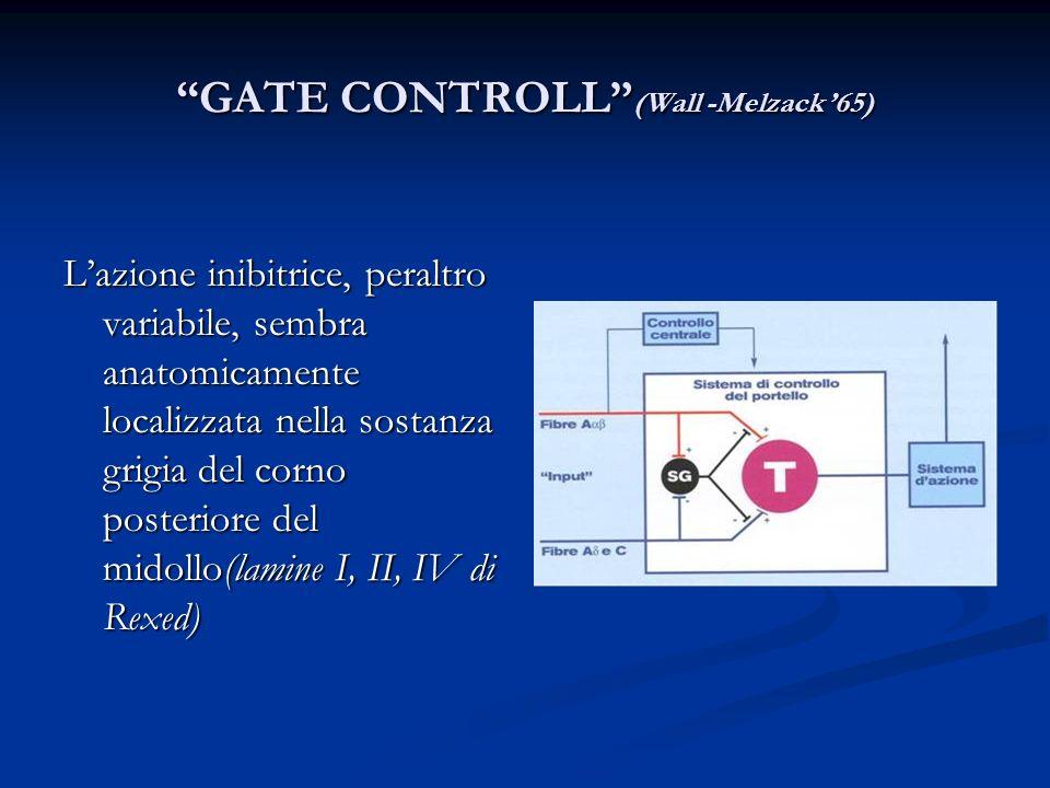 GATE CONTROLL (Wall -Melzack '65)