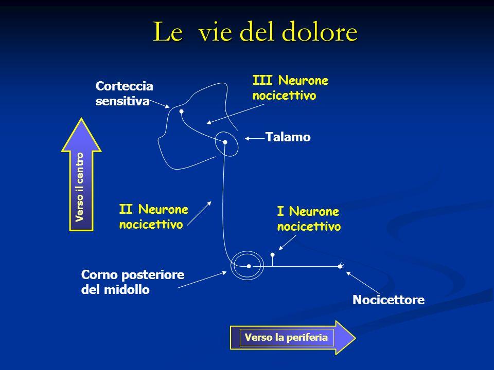 Le vie del dolore III Neurone Corteccia nocicettivo sensitiva Talamo