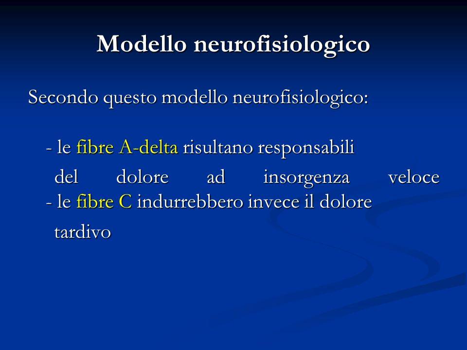 Modello neurofisiologico