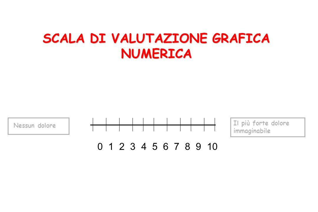 SCALA DI VALUTAZIONE GRAFICA NUMERICA