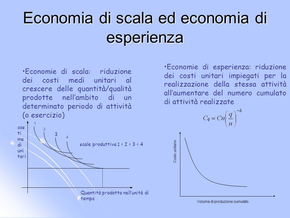 Economia di scala ed economia di esperienza