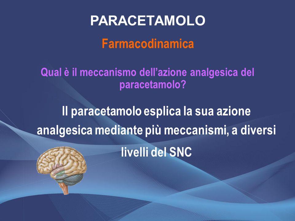 Qual è il meccanismo dell'azione analgesica del paracetamolo