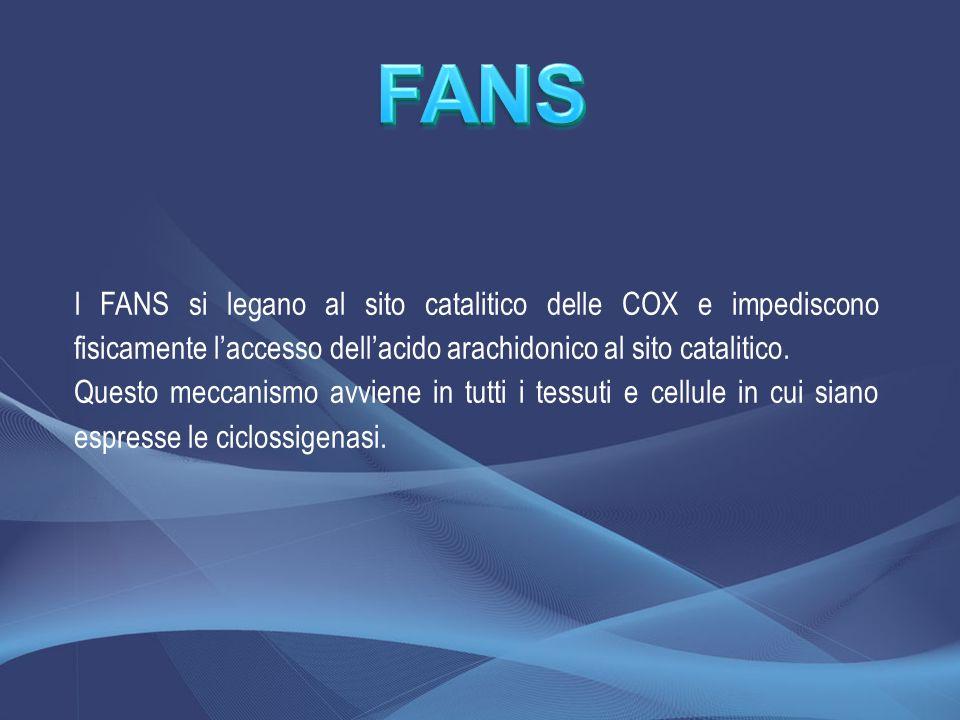 FANS I FANS si legano al sito catalitico delle COX e impediscono fisicamente l'accesso dell'acido arachidonico al sito catalitico.