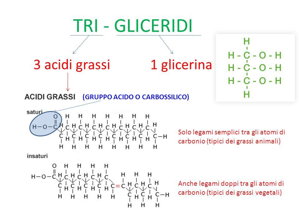 TRI - GLICERIDI 3 acidi grassi 1 glicerina