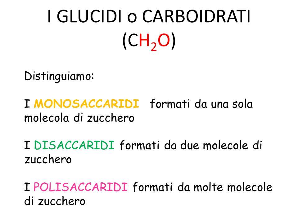 I GLUCIDI o CARBOIDRATI (CH2O)