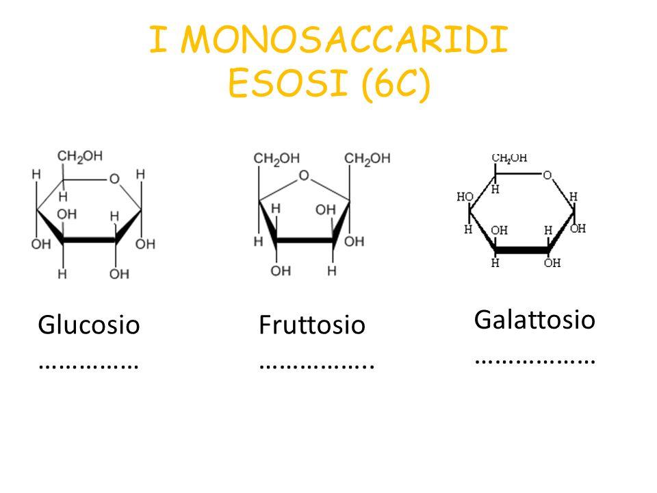I MONOSACCARIDI ESOSI (6C)