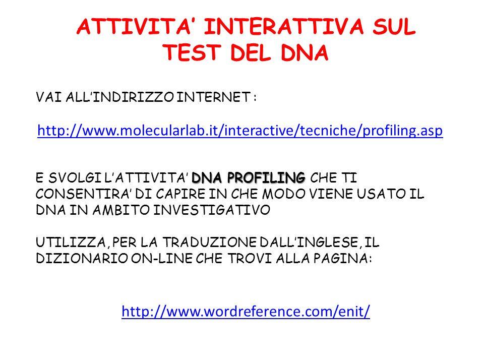 ATTIVITA' INTERATTIVA SUL TEST DEL DNA