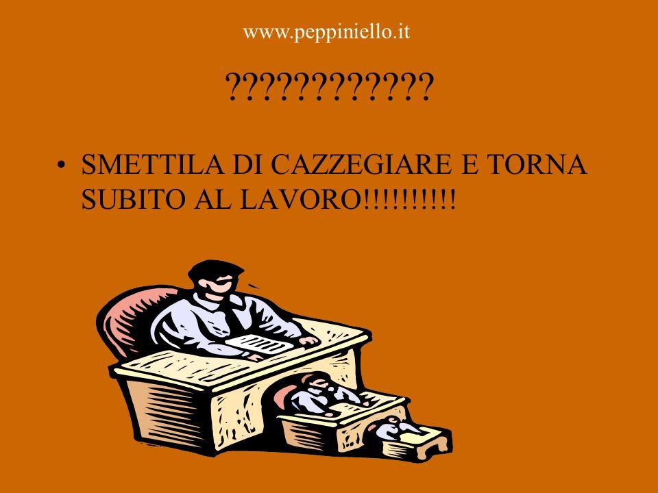 SMETTILA DI CAZZEGIARE E TORNA SUBITO AL LAVORO!!!!!!!!!!