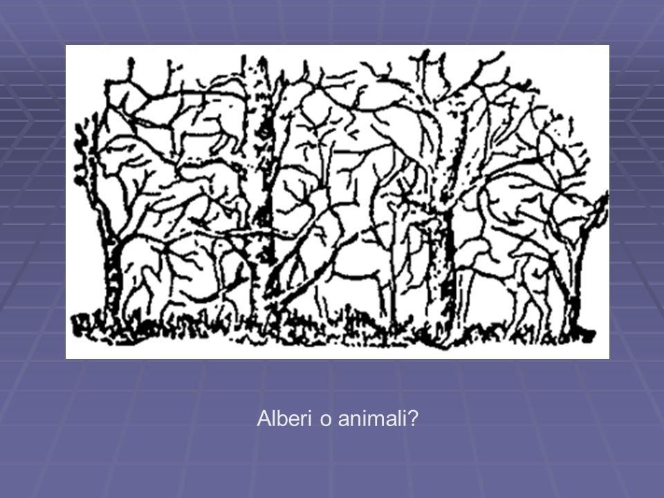 Alberi o animali
