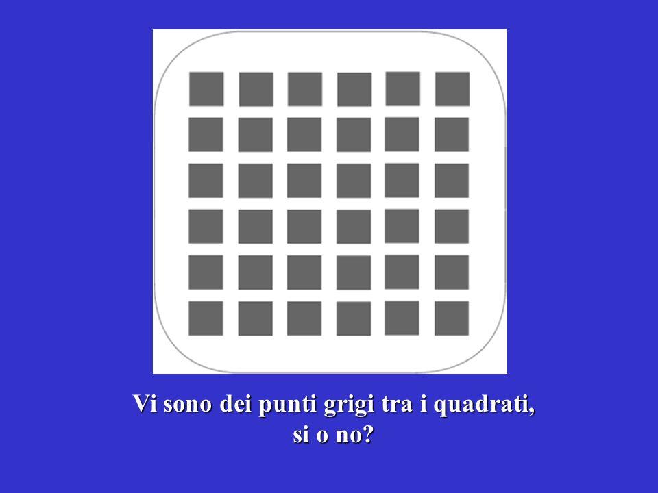 Vi sono dei punti grigi tra i quadrati, si o no