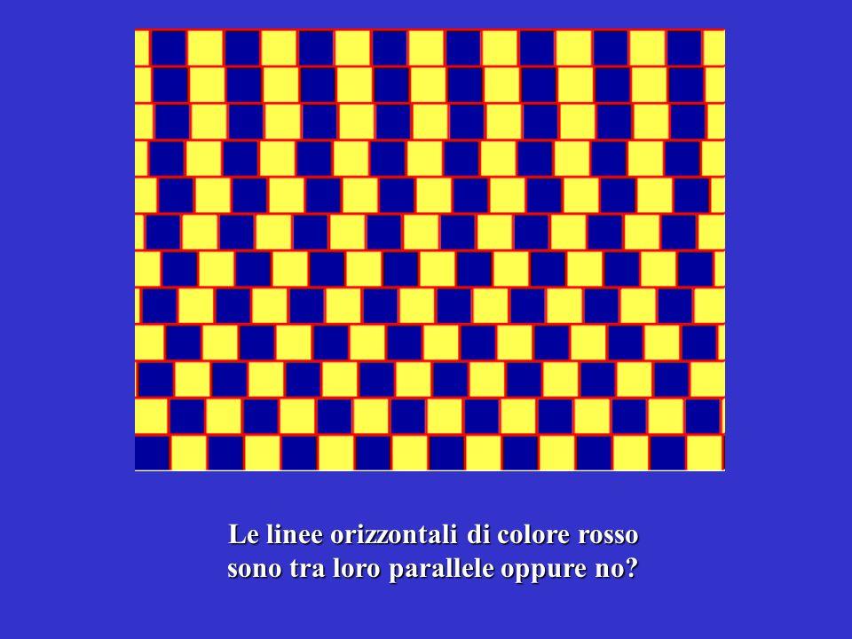 Le linee orizzontali di colore rosso sono tra loro parallele oppure no