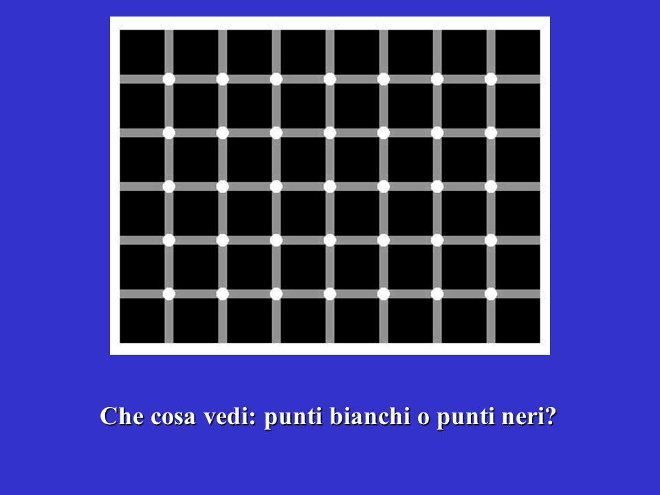 Che cosa vedi: punti bianchi o punti neri