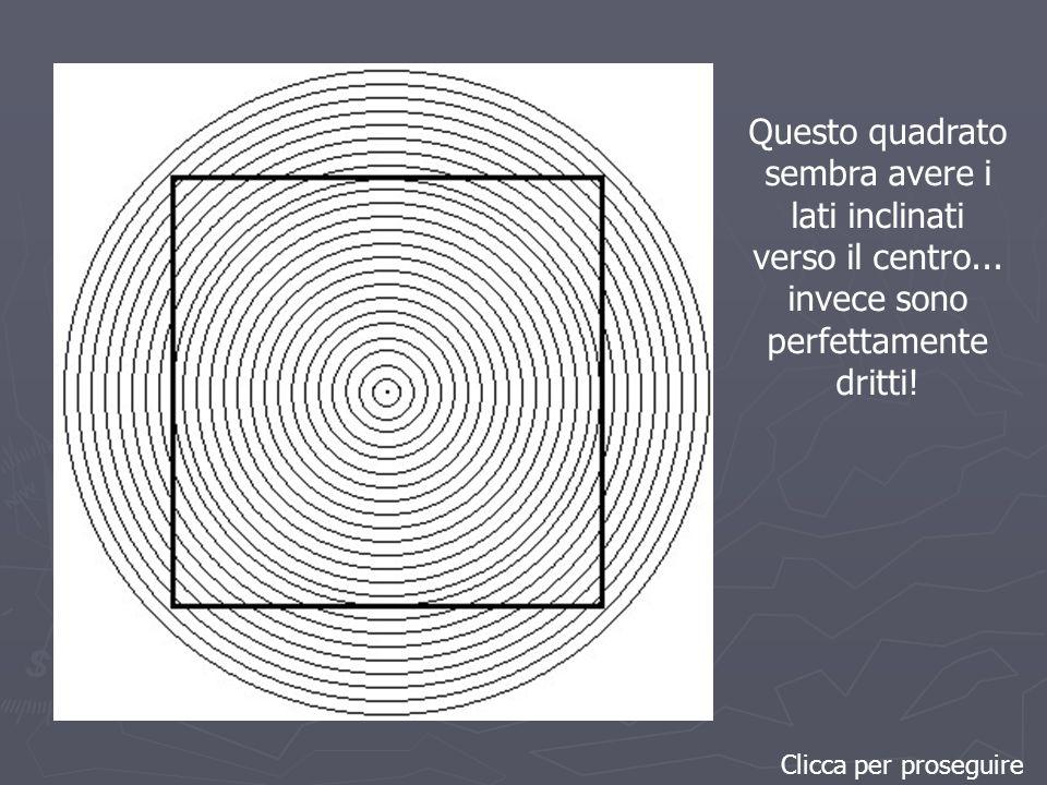 Questo quadrato sembra avere i lati inclinati verso il centro