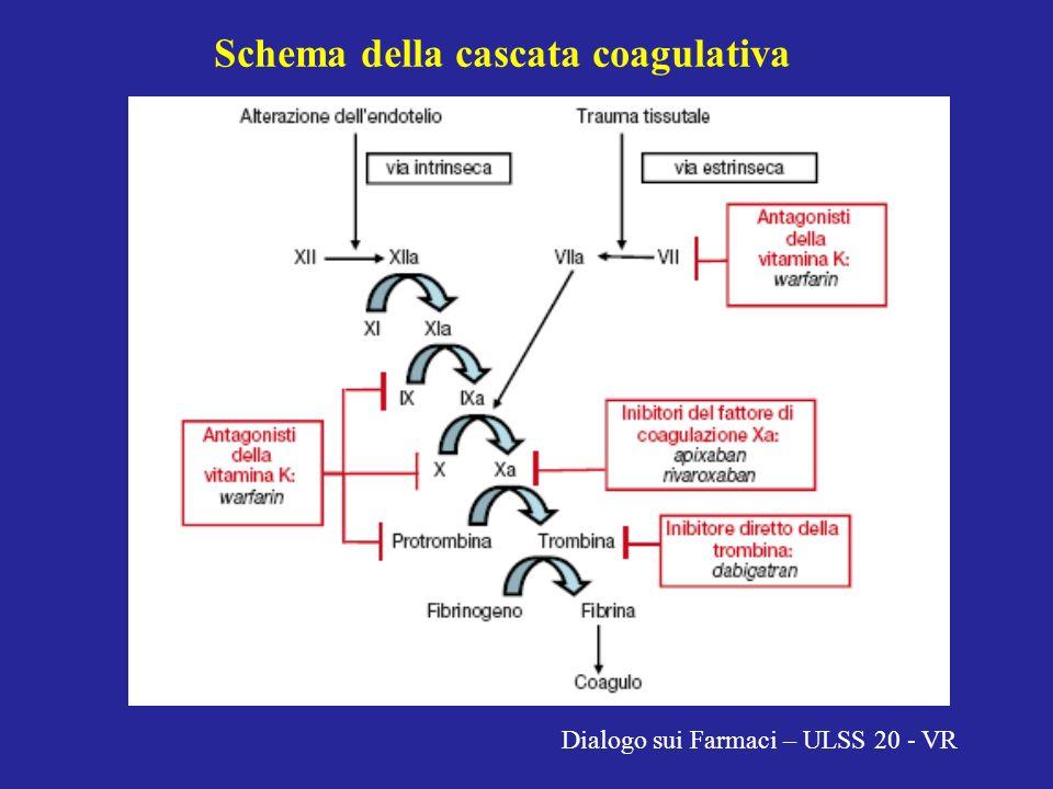 Schema della cascata coagulativa