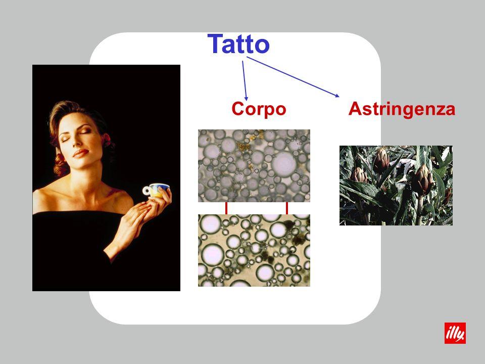 Tatto Corpo Astringenza