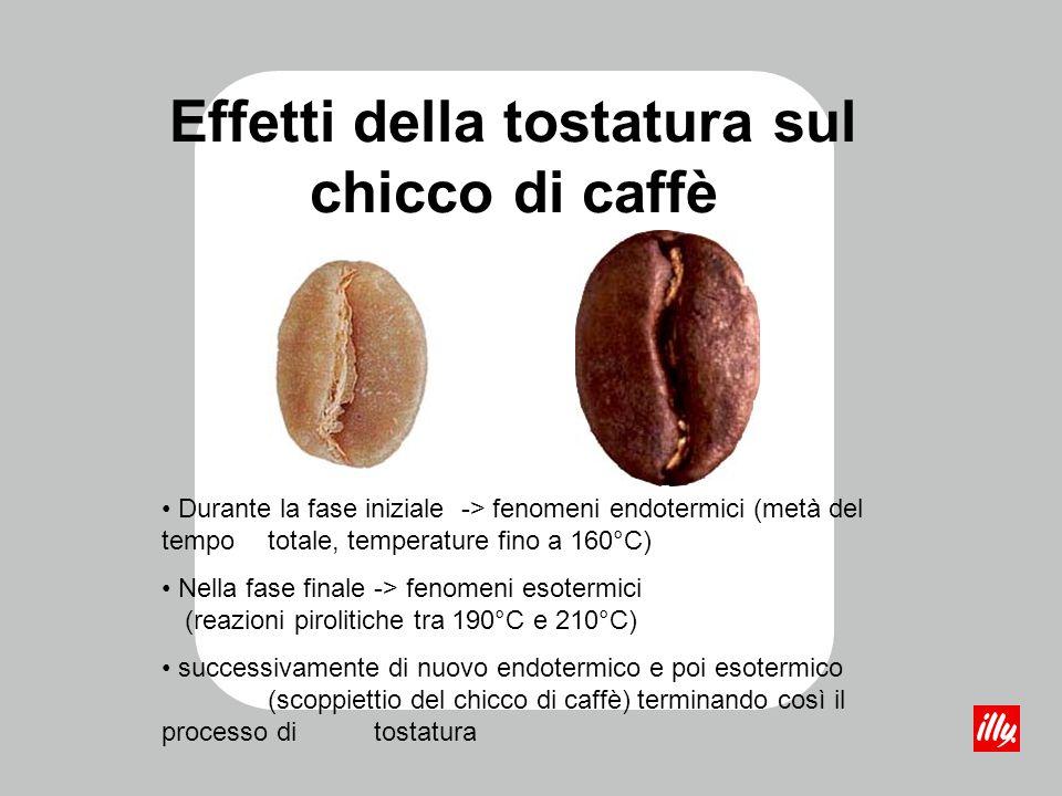 Effetti della tostatura sul chicco di caffè