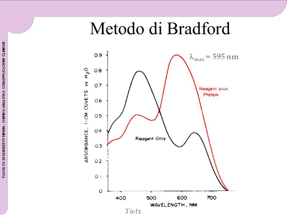 Metodo di Bradford max = 595 nm Tietz Tietz