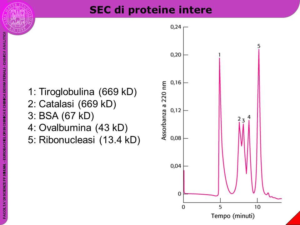 SEC di proteine intere 1: Tiroglobulina (669 kD) 2: Catalasi (669 kD) 3: BSA (67 kD) 4: Ovalbumina (43 kD)
