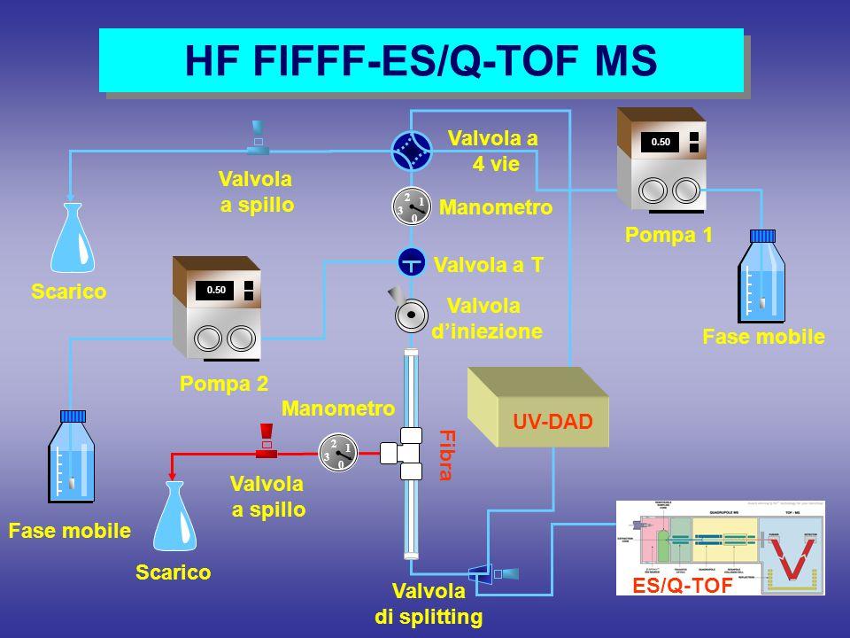 HF FlFFF-ES/Q-TOF MS Valvola a 4 vie Valvola a spillo Manometro