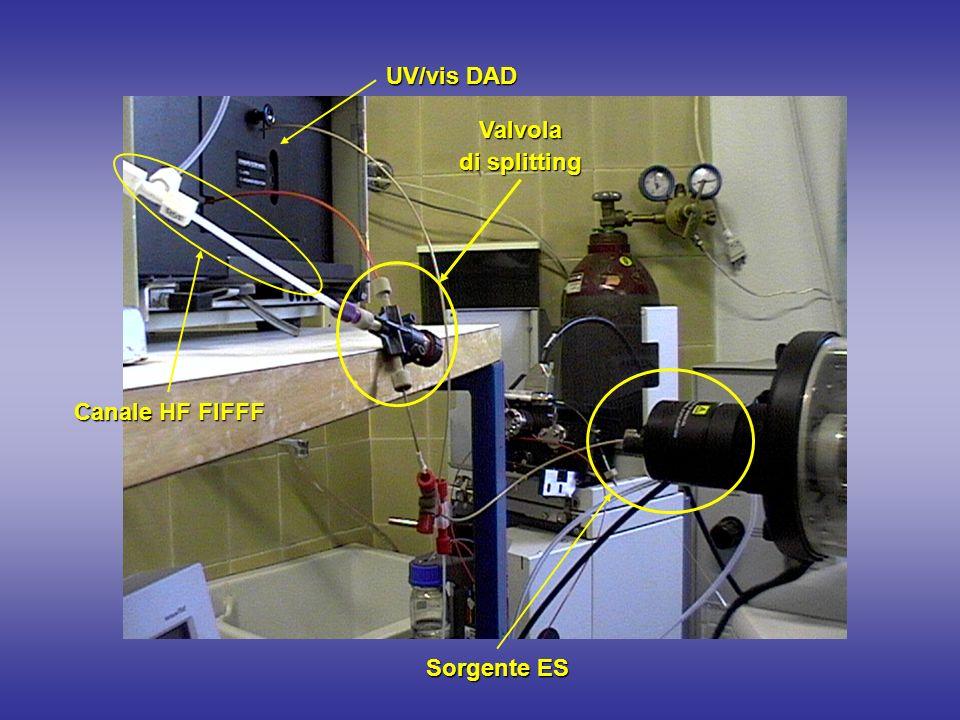 UV/vis DAD Valvola di splitting Canale HF FlFFF Sorgente ES