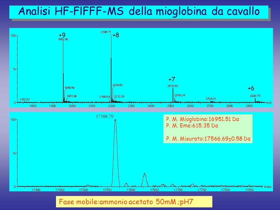 Analisi HF-FlFFF-MS della mioglobina da cavallo
