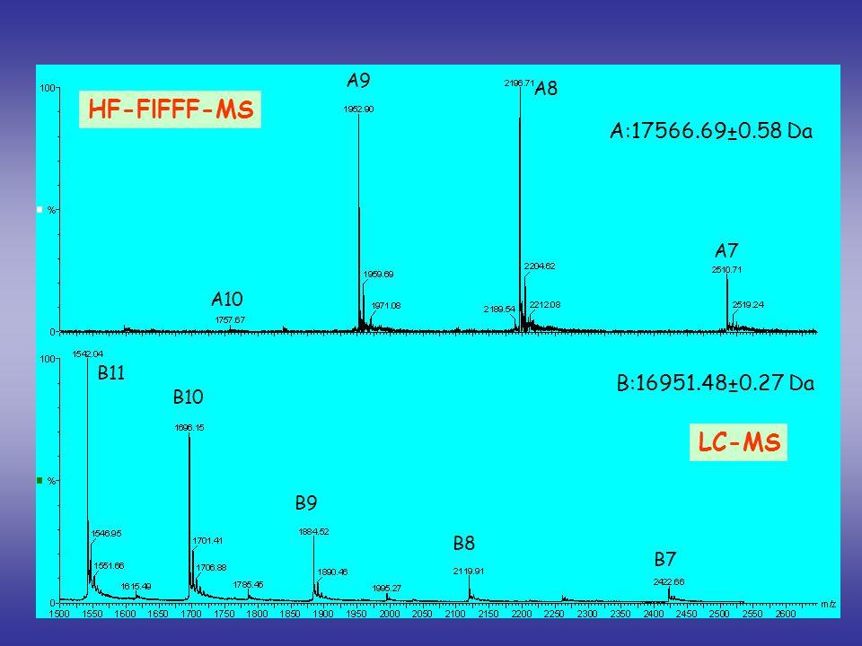 HF-FlFFF-MS LC-MS A:17566.69±0.58 Da B:16951.48±0.27 Da A9 A8 A7 A10
