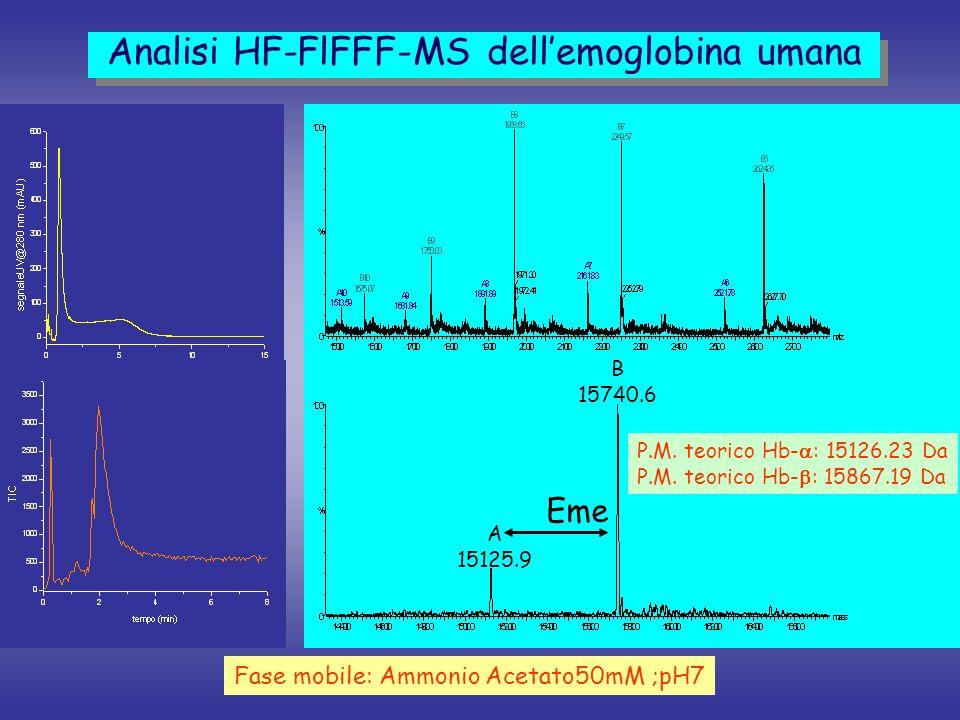 Analisi HF-FlFFF-MS dell'emoglobina umana