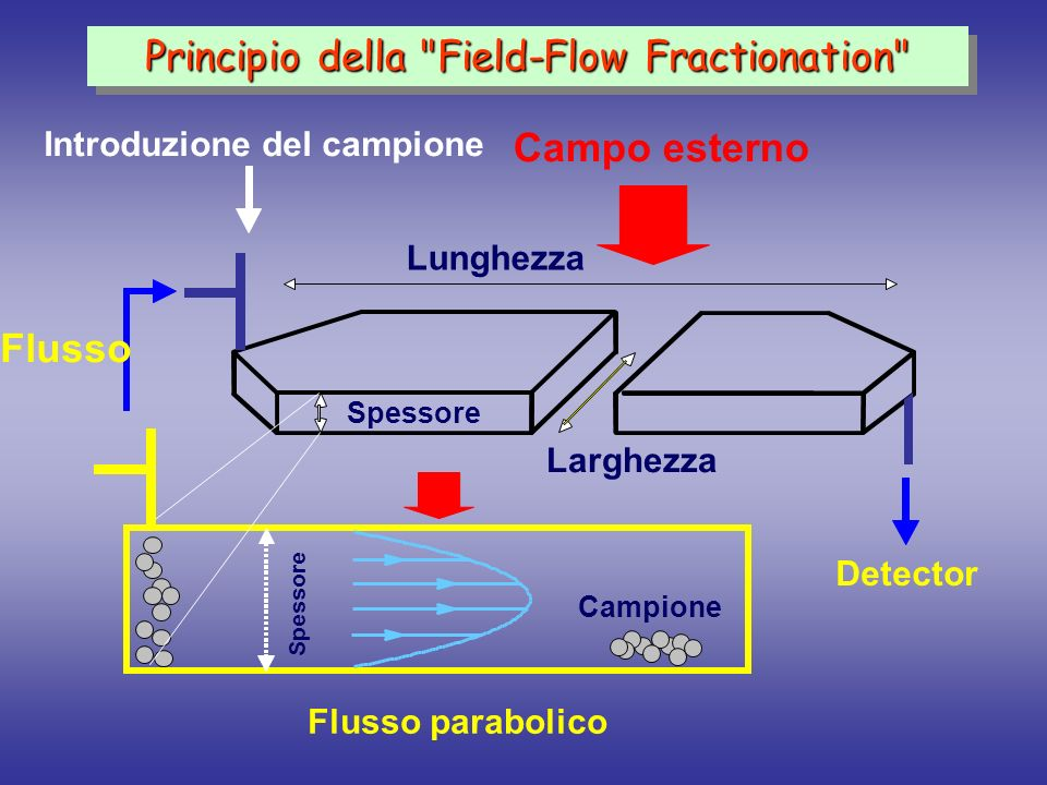 Principio della Field-Flow Fractionation