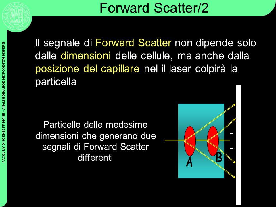 Forward Scatter/2
