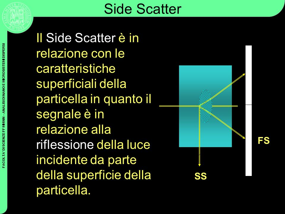 Side Scatter