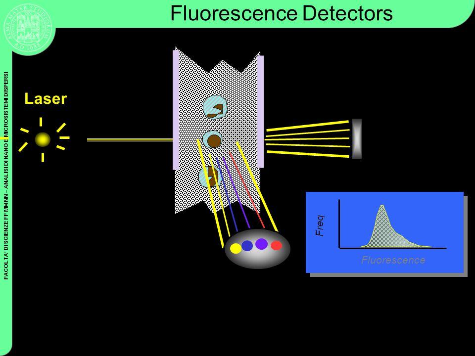 Fluorescence detector