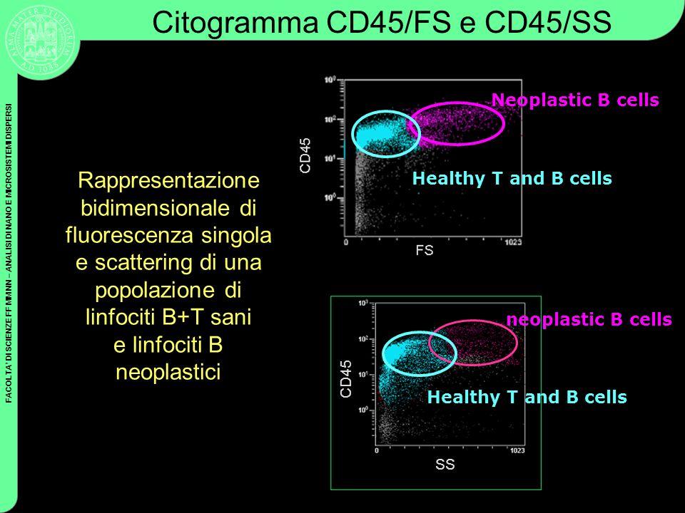 Citogramma CD45/FS e CD45/SS