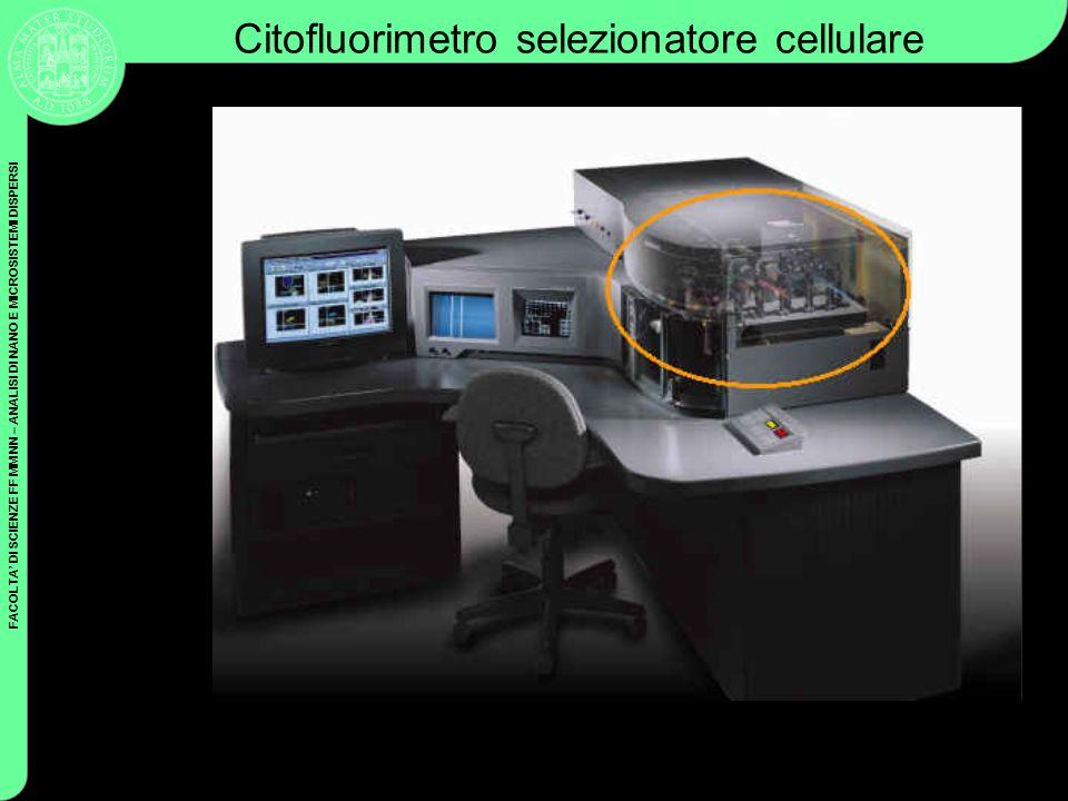 Citofluorimetro selezionatore cellulare