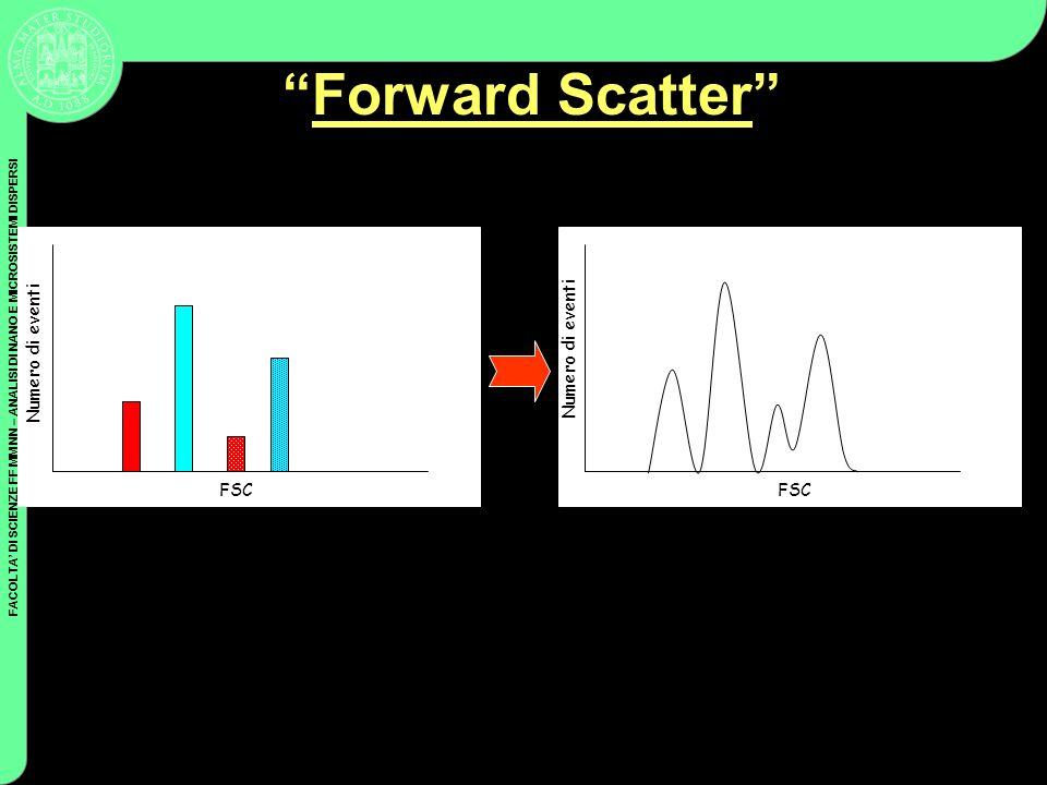 Forward Scatter FSC Numero di eventi FSC Numero di eventi
