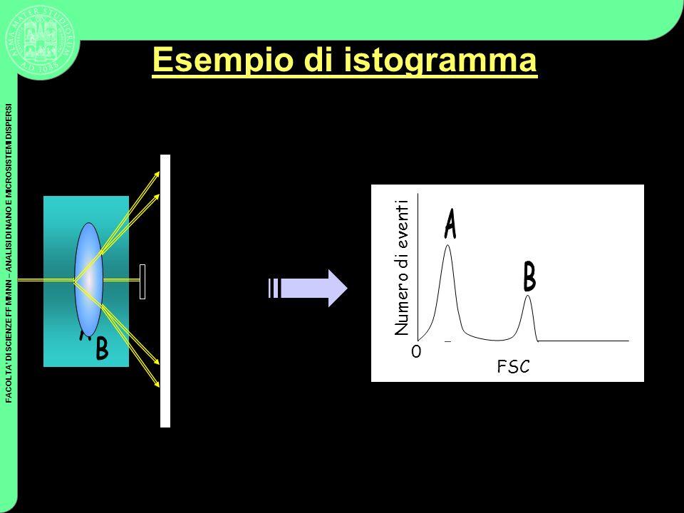 Esempio di istogramma B B A A A Numero di eventi B FSC