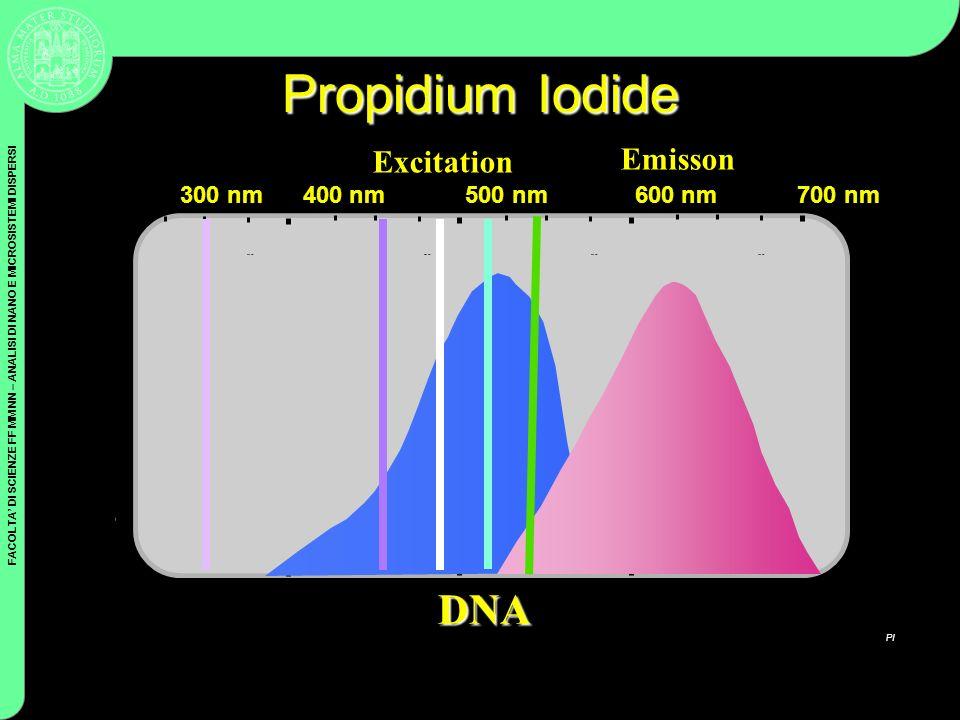 Propidium Iodide DNA Excitation Emisson