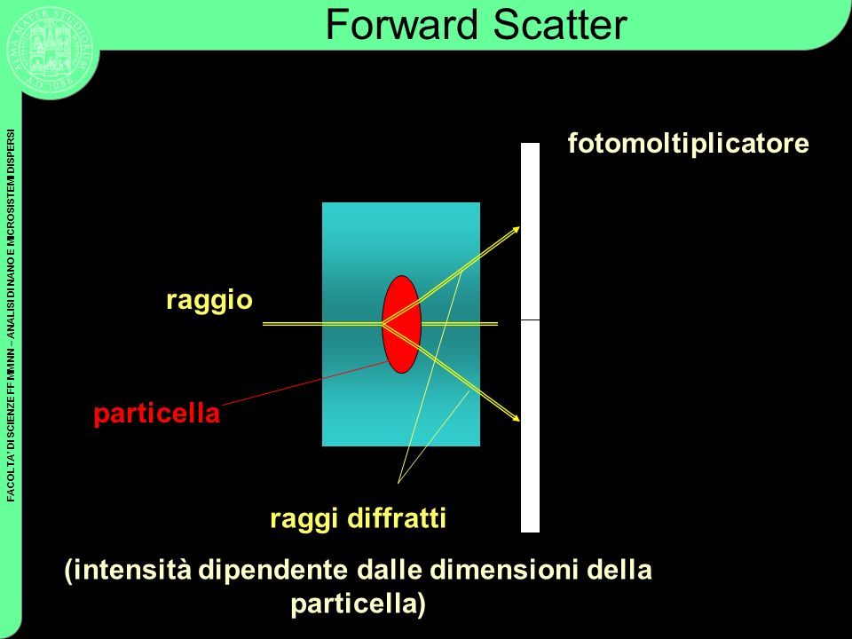 (intensità dipendente dalle dimensioni della particella)