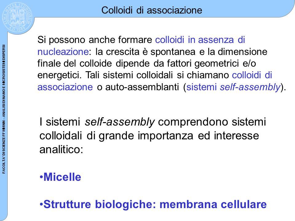 Strutture biologiche: membrana cellulare