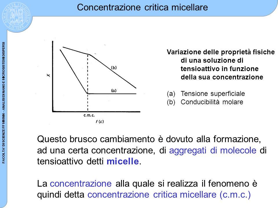 Concentrazione critica micellare