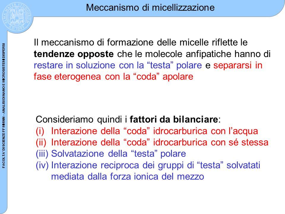 Meccanismo di micellizzazione