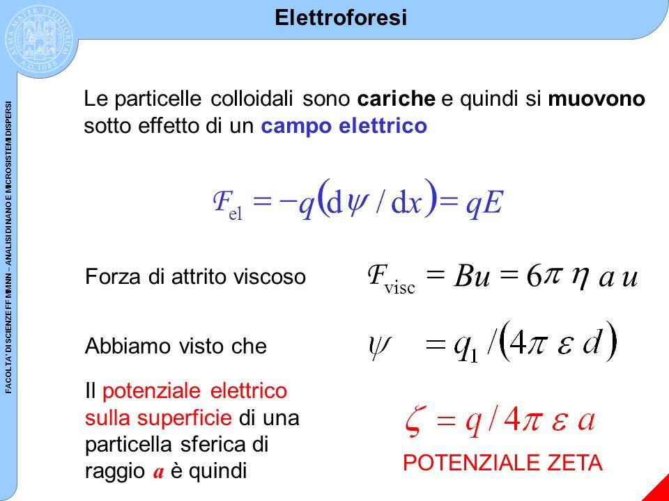 ( ) F = - q d y / d x = qE u a Bu 6 h p = F Elettroforesi