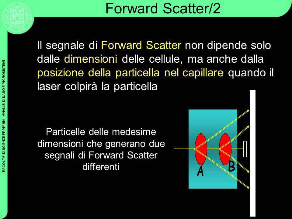 Forward Scatter/2