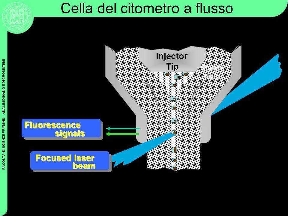 Cella del citometro a flusso