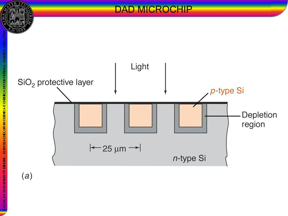 DAD MICROCHIP