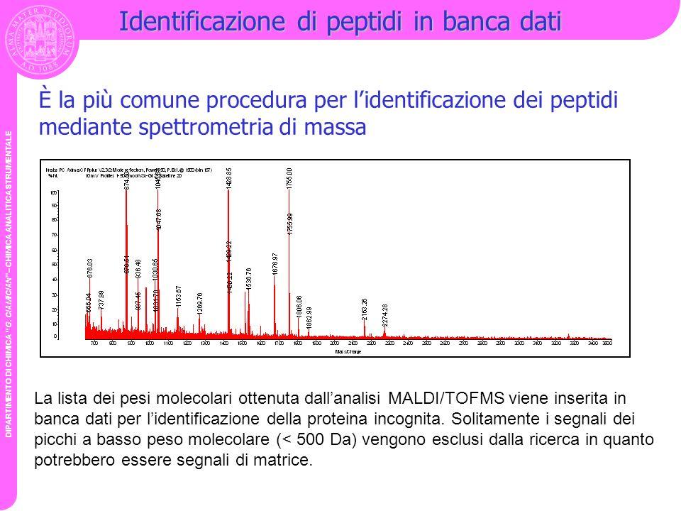 Identificazione di peptidi in banca dati