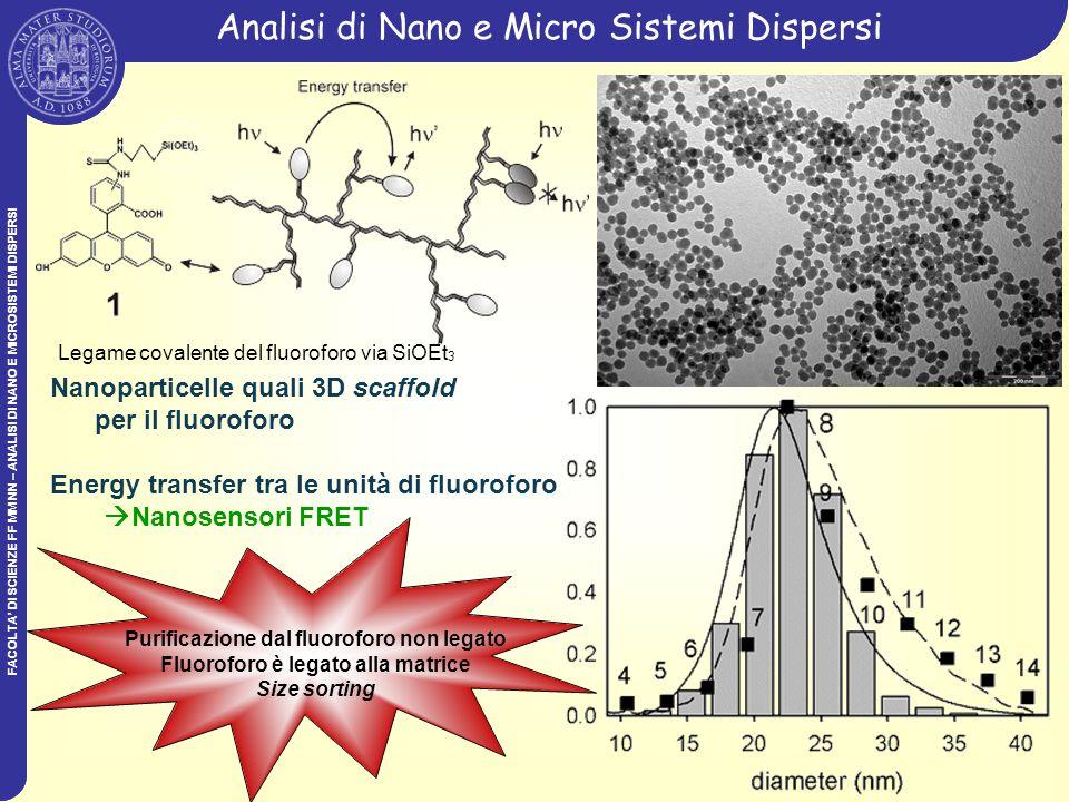 Analisi di Nano e Micro Sistemi Dispersi