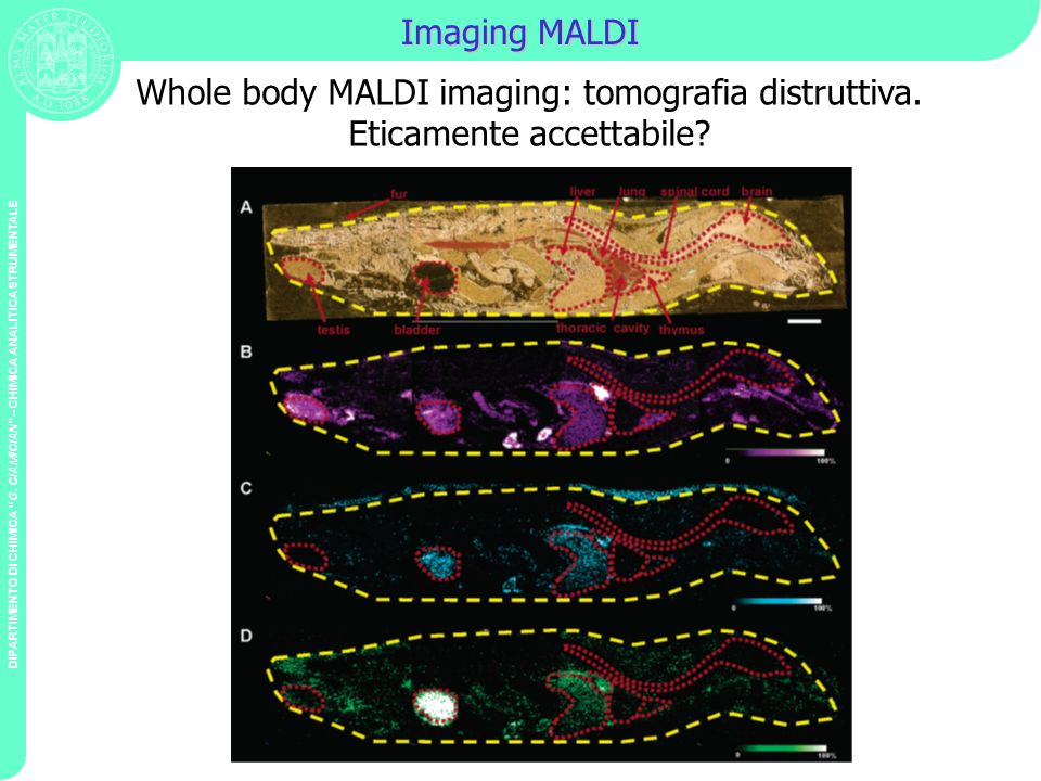 Whole body MALDI imaging: tomografia distruttiva.