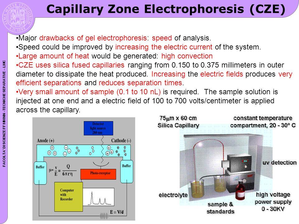 Capillary Zone Electrophoresis (CZE)