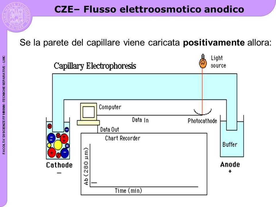 CZE– Flusso elettroosmotico anodico