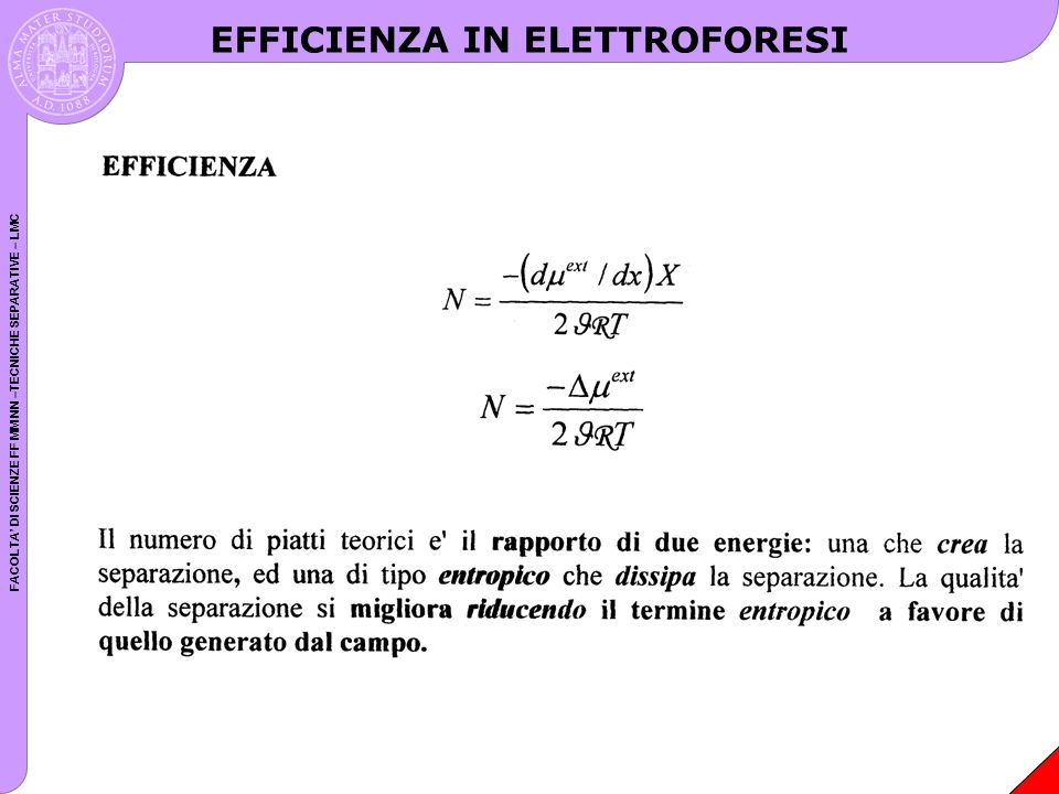 EFFICIENZA IN ELETTROFORESI